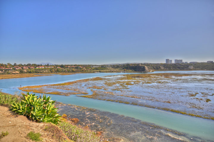 Bolsa Chica Wetland Homes | Huntington Beach Real Estate